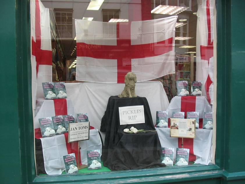 Animal Graves window display at Waterstones